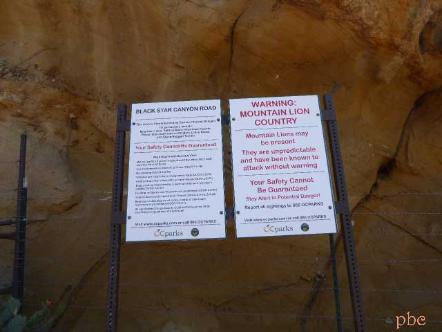 Mountain-Lion-Warning