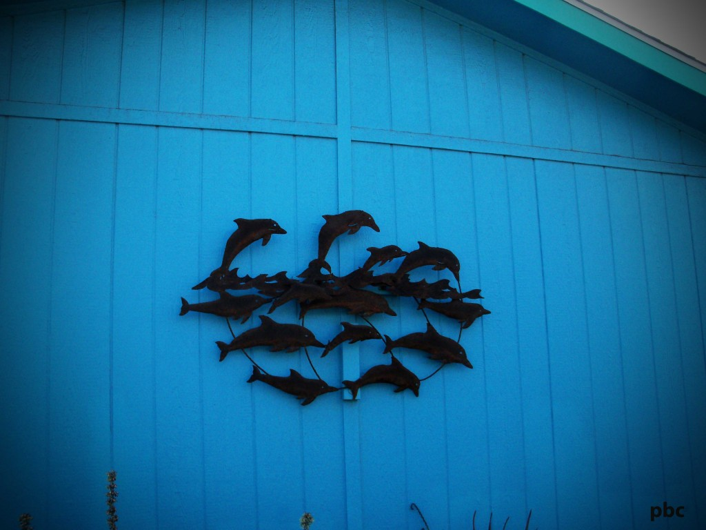 Dolphins-on-house-wall